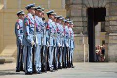 μεταβαλλόμενες φρουρέ&sigma Στοκ Φωτογραφίες