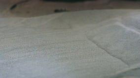 Μεταλλική σκόνη στη συμπυκνώνοντας μηχανή λέιζερ αιθουσών για το μέταλλο φιλμ μικρού μήκους