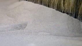 Μεταλλική σκόνη στη συμπυκνώνοντας μηχανή λέιζερ για το μέταλλο τρισδιάστατο μέταλλο εκτύπωσης εκτυπωτών φιλμ μικρού μήκους