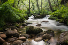 Μεταξωτός ποταμός νερού στοκ φωτογραφίες