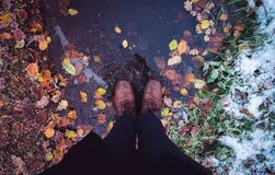 Μεταξύ του φθινοπώρου και του χειμώνα Στοκ εικόνες με δικαίωμα ελεύθερης χρήσης