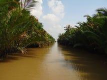 Μεταξύ των αλσυλλίων ποταμών, Βιετνάμ Στοκ φωτογραφία με δικαίωμα ελεύθερης χρήσης