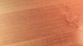 Μετατροπή του νομίσματος απόθεμα βίντεο