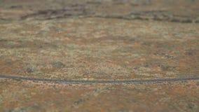 Μετατόπιση κλίσης περπατήματος φαραγγιών ερήμων φιλμ μικρού μήκους