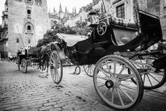 Μεταφορά αλόγων στη Σεβίλη κοντά στον καθεδρικό ναό Giralda, Ισπανία στοκ εικόνα με δικαίωμα ελεύθερης χρήσης