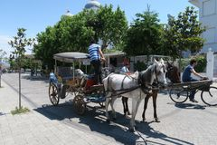 Μεταφορά αλόγων στο νησί Buyukada - μέρος των νησιών πριγκήπων - κοντά στη Ιστανμπούλ, Τουρκία Στοκ φωτογραφίες με δικαίωμα ελεύθερης χρήσης