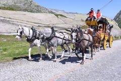 Μεταφορά αλόγων στο πέρασμα του ST Gotthard, Ελβετία Στοκ Φωτογραφία