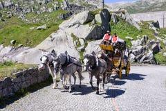 Μεταφορά αλόγων στο πέρασμα του ST Gotthard, Ελβετία Στοκ Εικόνα