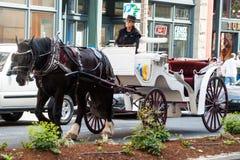 Μεταφορά αλόγων στο τετράγωνο πρωτοπόρων, Σιάτλ, WA Στοκ Φωτογραφία