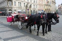 Μεταφορά αλόγων Στοκ Φωτογραφία