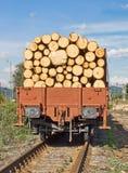 μεταφορά κούτσουρων ξύλι& Στοκ Φωτογραφία