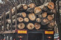 μεταφορά κούτσουρων Στοκ φωτογραφίες με δικαίωμα ελεύθερης χρήσης
