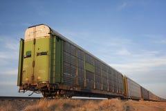 μεταφορά τραίνων ραγών ζωικού κεφαλαίου αυτοκινήτων Στοκ Εικόνες