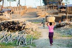 Μεταφορά των κούτσουρων μπαμπού στοκ φωτογραφίες με δικαίωμα ελεύθερης χρήσης