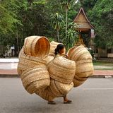 Μεταφορέας καλαθιών ινδικού καλάμου στοκ εικόνα με δικαίωμα ελεύθερης χρήσης