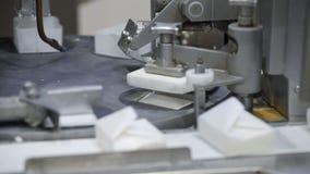 Μεταφορέας με τη συσκευασία τυριών εξοχικών σπιτιών στο εργοστάσιο ημερολογίων Γραμμή παραγωγής τυριών Γραμμή κατασκευής τυριών απόθεμα βίντεο