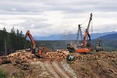 Μεταφορέας ξυλείας στοκ φωτογραφία με δικαίωμα ελεύθερης χρήσης