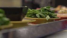 Μεταφορέας τροφίμων Η μύγα κάθεται σε τρόφιμα που έρχονται Υγειονομική έννοια προβλημάτων Αντι υγειονομική έννοια απόθεμα βίντεο
