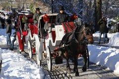 Μεταφορές στο Central Park Στοκ Φωτογραφίες