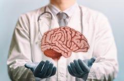 Μεταχείρηση ενός εγκεφάλου στοκ φωτογραφίες με δικαίωμα ελεύθερης χρήσης
