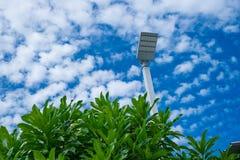 Μετα βιομηχανία ηλεκτρικής ενέργειας λαμπτήρων με το υπόβαθρο και το δέντρο μπλε ουρανού Στοκ φωτογραφία με δικαίωμα ελεύθερης χρήσης