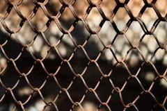 Μεταλλικός σκουριασμένος φράκτης σε ένα υπόβαθρο πλέγματος Στοκ φωτογραφία με δικαίωμα ελεύθερης χρήσης