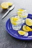 Μεταλλικό νερό με τα λεμόνια και τους κύβους πάγου Στοκ Φωτογραφία