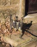 Μεταλλουργική ξύστρα μποτών Στοκ Φωτογραφία