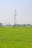 μετα ρύζι πεδίων ηλεκτρικής ενέργειας στοκ φωτογραφία με δικαίωμα ελεύθερης χρήσης