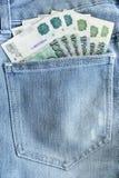 Μετρητά σε μια τσέπη Στοκ Εικόνα