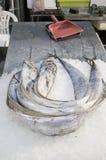 Μετρητής αγοράς ψαριών Στοκ φωτογραφία με δικαίωμα ελεύθερης χρήσης