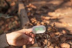 Μετρητής οξυγόνου αίματος στο δάχτυλο γυναικών ημέρα φθινοπώρου ηλιόλουστη στοκ φωτογραφίες με δικαίωμα ελεύθερης χρήσης