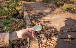 Μετρητής οξυγόνου αίματος στο δάχτυλο γυναικών ημέρα φθινοπώρου ηλιόλουστη στοκ φωτογραφίες
