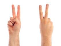 μετρώντας αρσενικό χεριών Στοκ Εικόνα