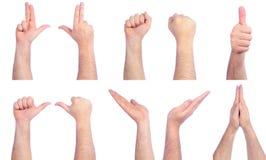 μετρώντας αρσενικό χεριών Στοκ Φωτογραφίες
