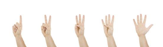 μετρώντας πέντε χέρια ένα Στοκ φωτογραφία με δικαίωμα ελεύθερης χρήσης