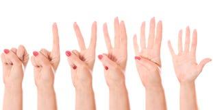 Μετρώντας χέρια (0 έως 5) Στοκ εικόνες με δικαίωμα ελεύθερης χρήσης