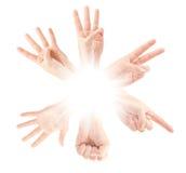 Μετρώντας χέρια ατόμων (0 έως 5) Στοκ εικόνες με δικαίωμα ελεύθερης χρήσης
