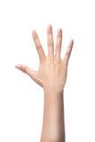 Μετρώντας χέρια γυναικών, αριθμός 5 Στοκ φωτογραφία με δικαίωμα ελεύθερης χρήσης
