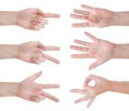 Μετρώντας χέρια που απομονώνονται στο λευκό Στοκ Εικόνες