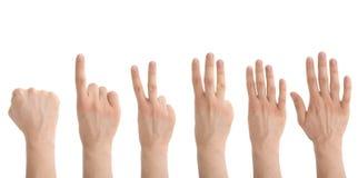 μετρώντας χέρια Στοκ Εικόνες