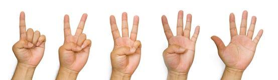 μετρώντας χέρια Στοκ φωτογραφίες με δικαίωμα ελεύθερης χρήσης