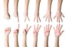 μετρώντας χέρια Στοκ εικόνες με δικαίωμα ελεύθερης χρήσης