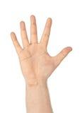 μετρώντας χέρι πέντε Στοκ Εικόνα