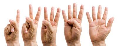 μετρώντας χέρι Στοκ φωτογραφίες με δικαίωμα ελεύθερης χρήσης