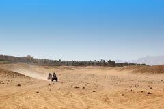 Με λάθη σαφάρι στην Αίγυπτο Άκρο από τον οδικό αγώνα Στοκ εικόνες με δικαίωμα ελεύθερης χρήσης