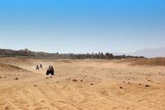 Με λάθη σαφάρι στην Αίγυπτο Άκρο από τον οδικό αγώνα Στοκ Εικόνα