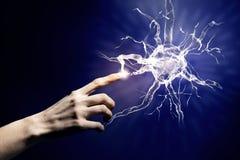 Μελέτη νευρολογίας στοκ φωτογραφία με δικαίωμα ελεύθερης χρήσης