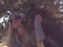 Μελαχροινός εραστής λύκων στοκ εικόνες με δικαίωμα ελεύθερης χρήσης