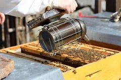 Μελισσοκόμος με τον καπνιστή Στοκ φωτογραφία με δικαίωμα ελεύθερης χρήσης